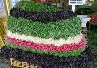 تهرانیها سالی ۲۶میلیارد تومان گِل و ریشه سبزی میخرند!