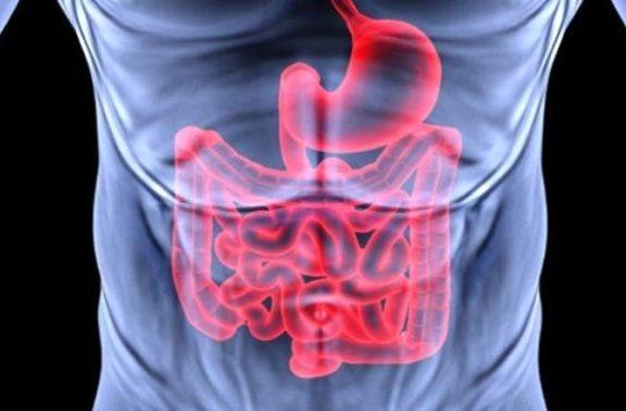 تاثیر عملکرد رودهها بر سلامت بدن