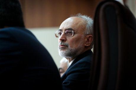 صالحی: صاحب و کارفرمای راکتور اراک ایران است