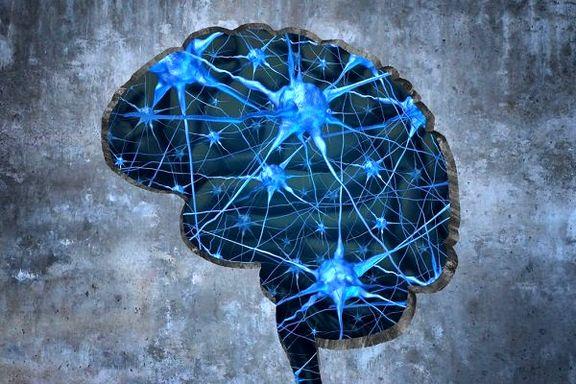 نکات جالبی که درباره مغز نمیدانید