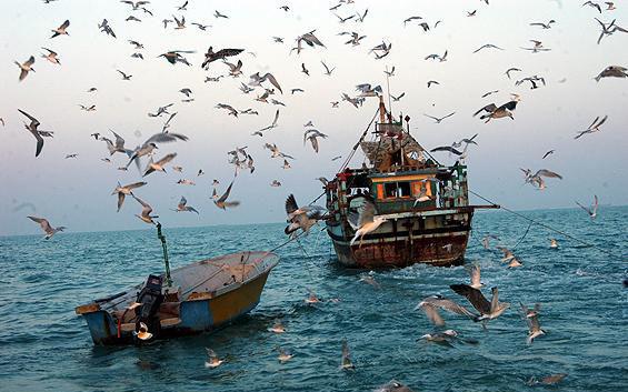 گسترش گردشگری برای غلبه بر فقر