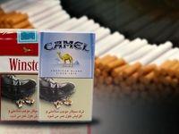 پشت پرده تولید گسترده سیگارهای آمریکایی در ایران
