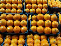 انواع میوه در پایان سال98 چند؟