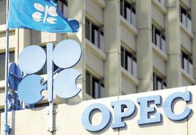 قیمت نفت اوپک رکورد زد