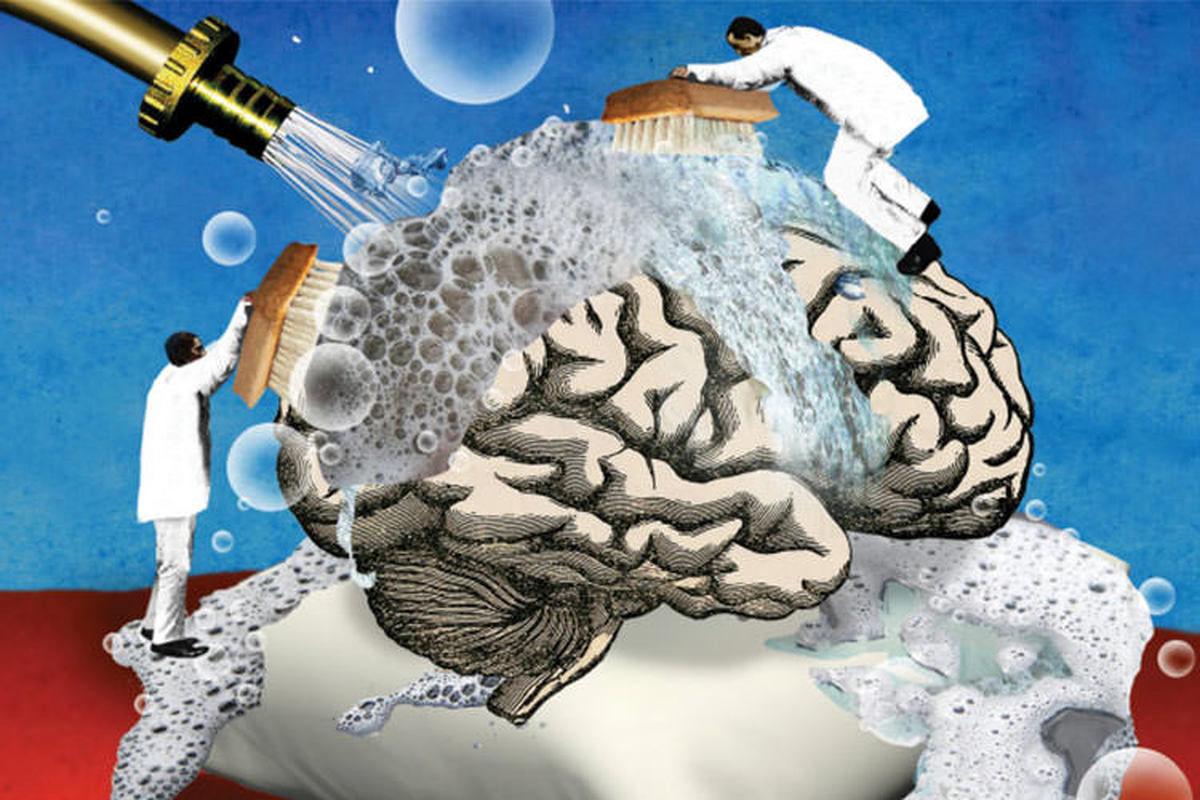 از سم زدایی مغز چه می دانید؟