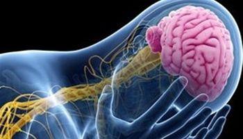 کشف راهکاری تازه برای درمان بیماری صرع