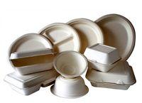 افزایش بیش از 2برابرى قیمت ظروف یکبار مصرف در یک سال/ سفره یکبار مصرف ارزان نخرید