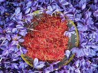 مشکلی در صادرات زعفران وجود ندارد
