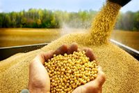 نهادههای کشاورزی در گروه اول ارز دولتی قرار گرفت
