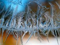 تصاویر زیبا از بلورهای یخی