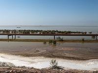 جادههای ارتباطی تاسیسات نفت در هورالعظیم ترمیم میشود/ سرنوشت تالاب چه میشود؟