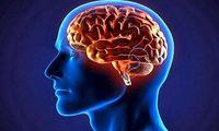 راههایی ساده برای تقویت حافظه