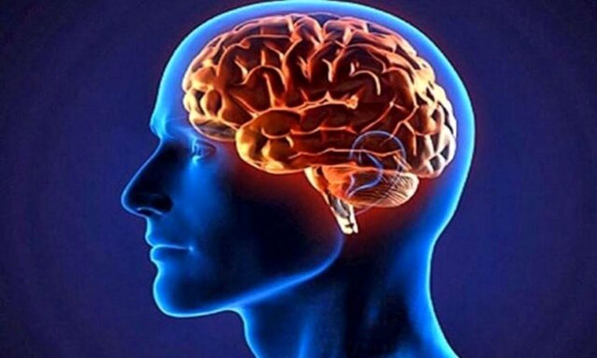 بین بیماری آلزایمر و شدت کووید۱۹ ارتباط وجود دارد