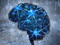 کشف تونلهای مخفی در مغز! +عکس
