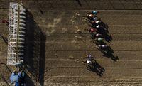 جدال اسبها در  آق قلا +تصاویر