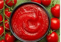 صادرات رب گوجه تا پایان فروردین آزاد شد