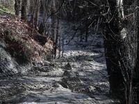 سیلاب به 100مکان در طرقبه و شاندیز مشهد خسارت زد