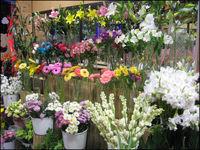 تعطیلی 35 درصد گلفروشیهای پایتخت تا پایان سال