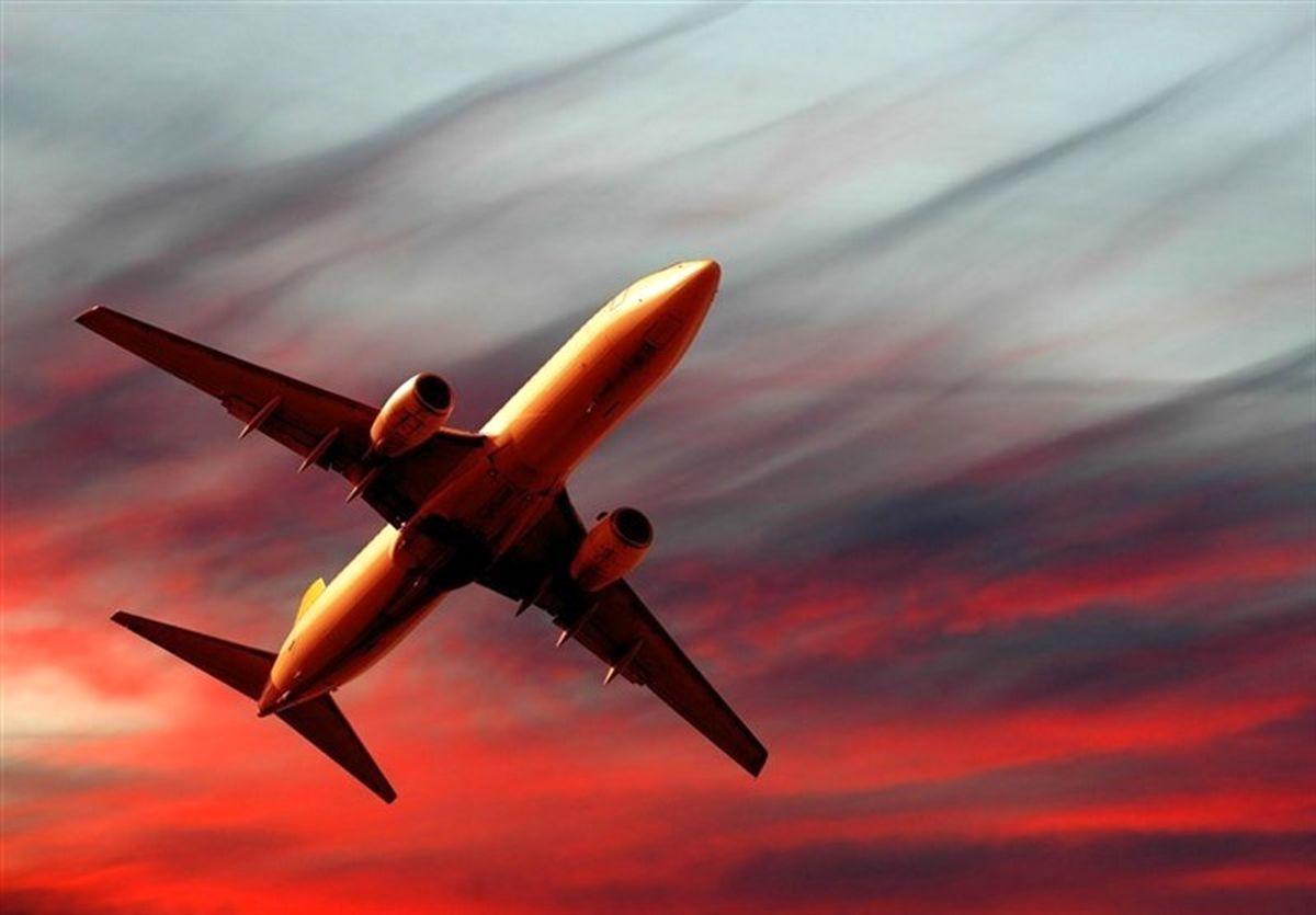 درگیری دو زن در هواپیما! +فیلم