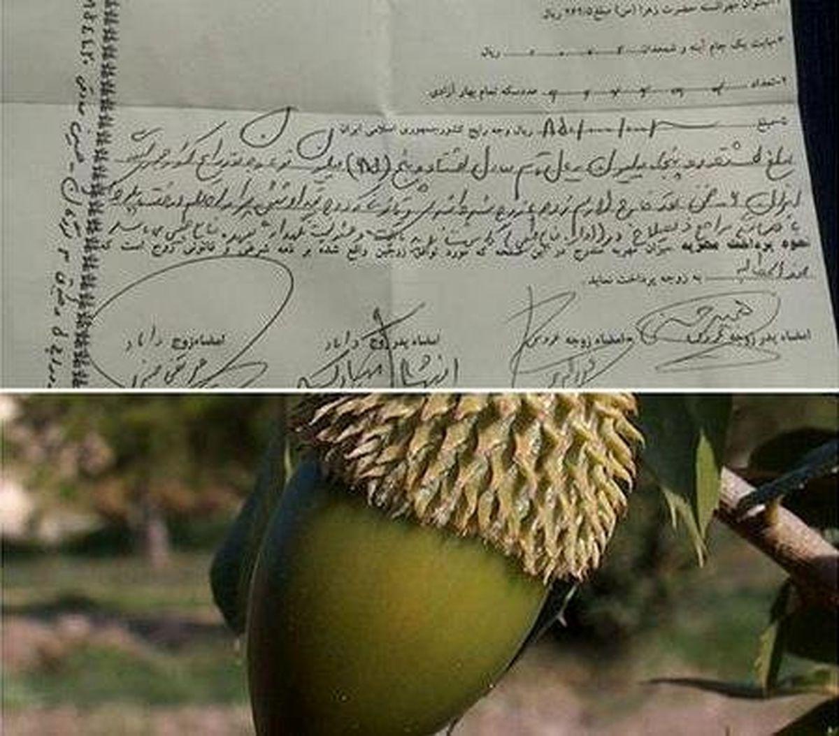 رسید مهریه عجیب یک عروس ایرانی +عکس