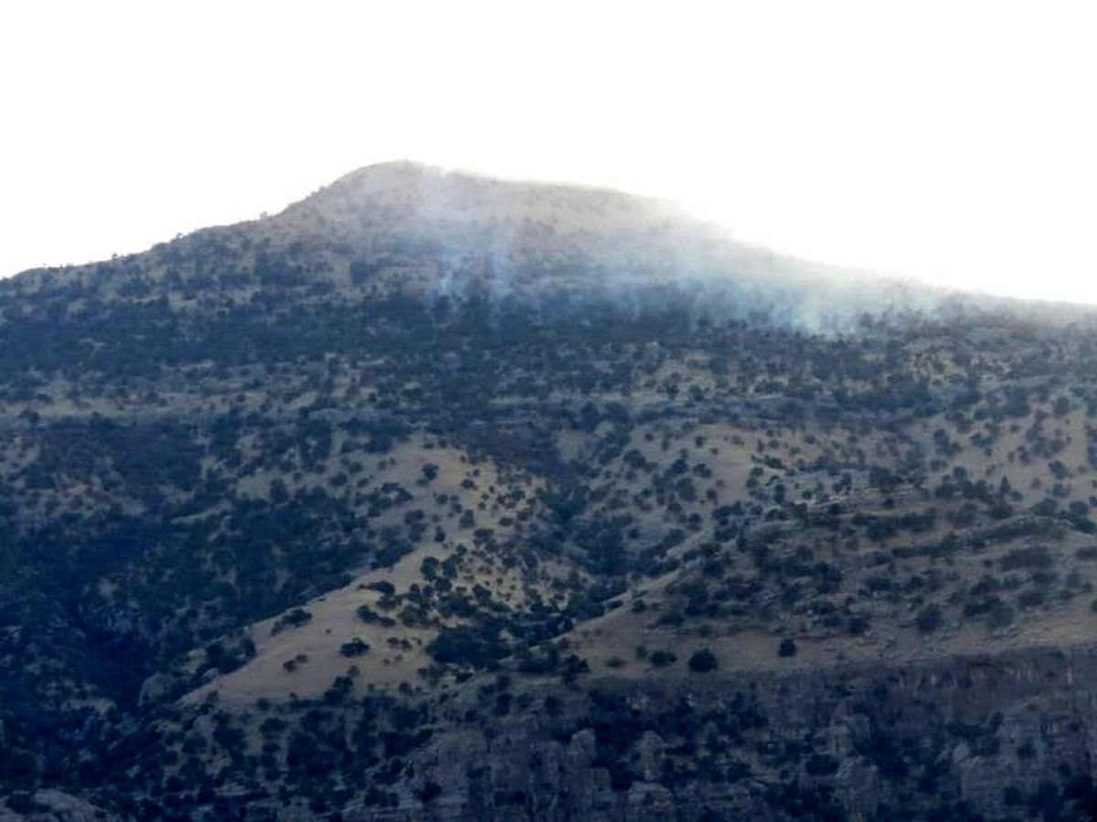 آتش به جان جنگل های اندیکا افتاد