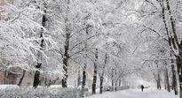 بارش برف بهاری در آمریکا +تصاویر