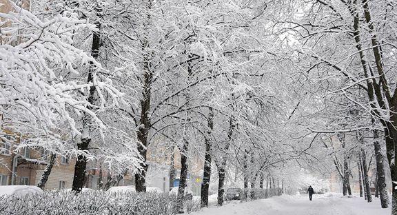 تهران، فردا هم برفی است