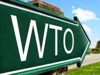 انتقاد چین و اروپا از بحرانآفرینی آمریکا در WTO