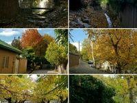 محله اسلامآباد منطقه 15 را بشناسید