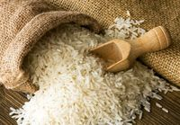 نماد معاملاتی گواهی سپرده برنج طارم در بورس کالا گشوده میشود
