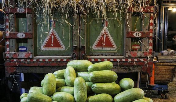 کاهش قیمت میوههای تابستانه در میادین میوه و ترهبار