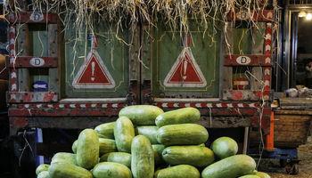 گشت شب یلدا در میدان میوه و تره بار +تصاویر