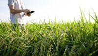 پرداخت غرامت کشاورزان سیل زده آغاز شد