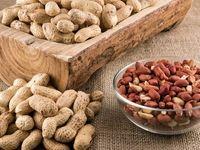 تاثیر مصرف بادام زمینی در تقویت عملکرد شناختی مغز