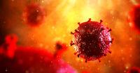 قایمباشک بازی ویروس اچآیوی در مغز!