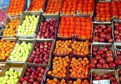 ذخیرهسازی میوه شب عید آغاز شد