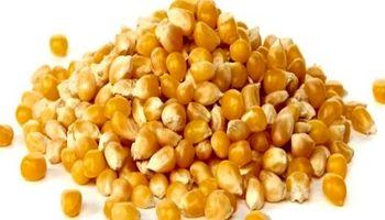 4سیاست برای اصلاح واردات محصولات اساسی کشاورزی