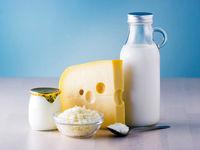 ثبات در قیمت شیر
