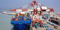 ۶۹ درصد؛ سهم کالاهای اساسی از واردات