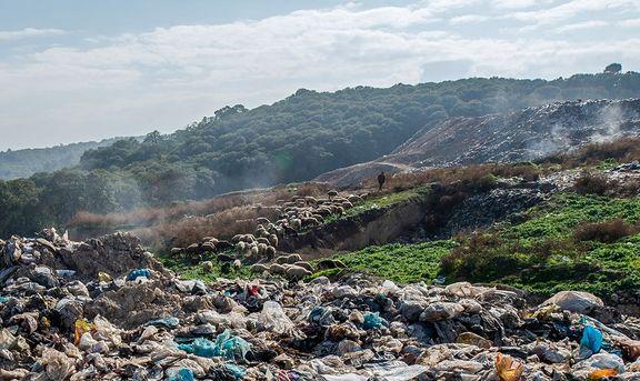 کاهش هزار تنی زباله در تهران پس از گرانی دلار