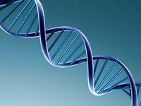 مهار سرطان ریه تنها با حذف یک ژن کلیدی