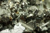 چشم انداز کاهشی قیمت جهانی فلزات در سال 2020/ طلا به بالاترین رشد از سال 2013 دست مییابد