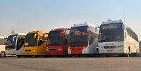 بازار داغ اتوبوس دربستی اربعین