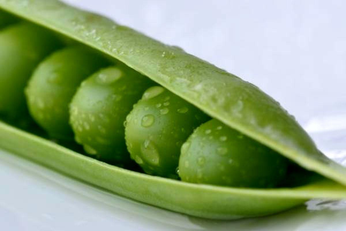میوههایی که با سبزیجات اشتباه گرفته میشوند