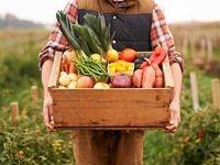 از نشانههای سهم ناکافی سبزیها در رژیم غذایی