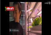 پرورش سبزیجات داخل رستوران +فیلم