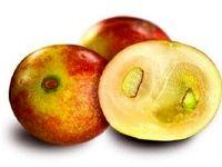 میوهای که از چاقی و بیماریهای متابولیک پیشگیری میکند
