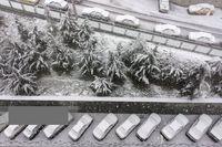 بارش برف بهاری در تهران +عکس