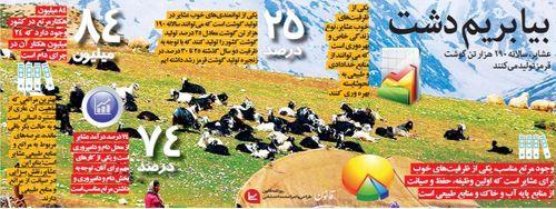 عشایر تولید کننده ۲۵درصد از گوشت کشور +اینفوگرافیک