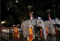 جشنواره دندانِ بودا +عکس